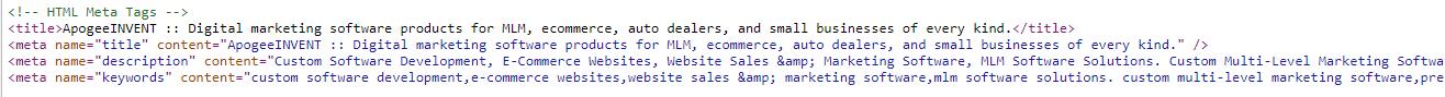 Title Tag Meta Data Example