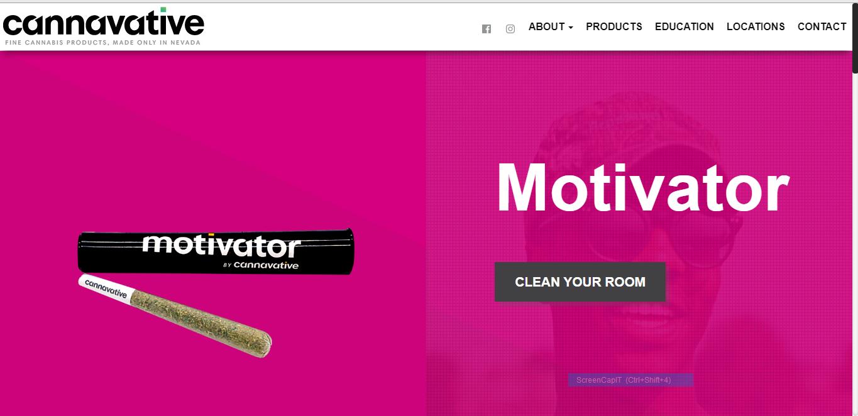 cannabis website professional website design Nevada